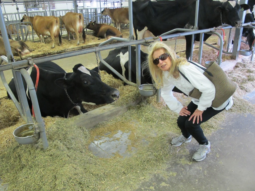 me with cow