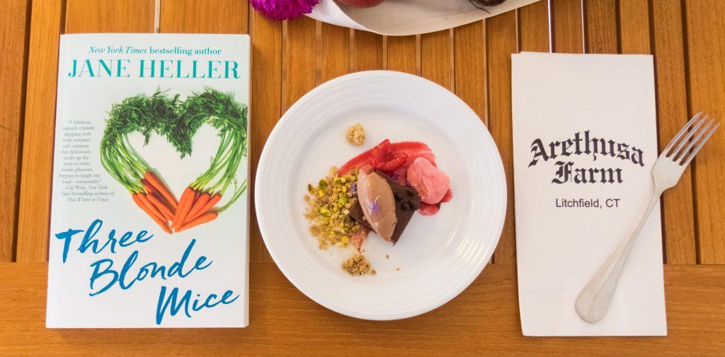 Book and dessert plus napkins Jane_Heller_Book_Promo_8-6-16-13